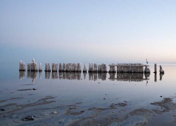 Bombay Bay